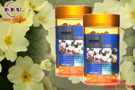Tinh Dầu Hoa Anh Thảo - Evening Primrose Oil costar 365 viên