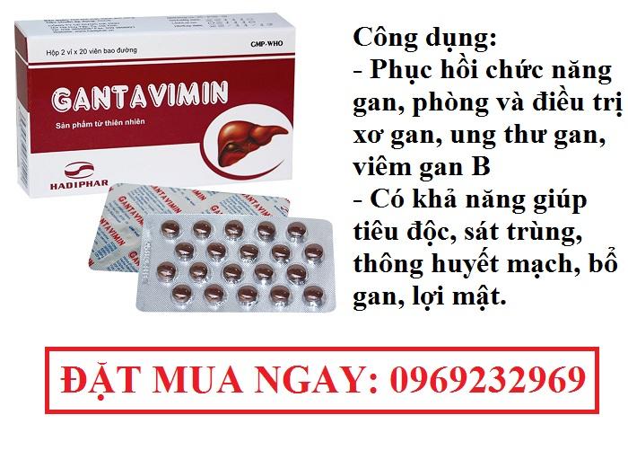 Gantavimin-thuoc-đieu-tri-cac-benh-ve-gan-2