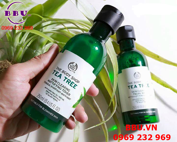 Nước hoa hồng The Body Shop Tea Tree Skin Clearing