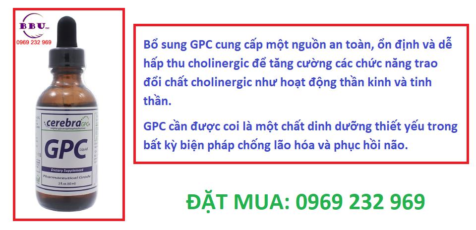 Thuốc bổ não Cerebara GPC