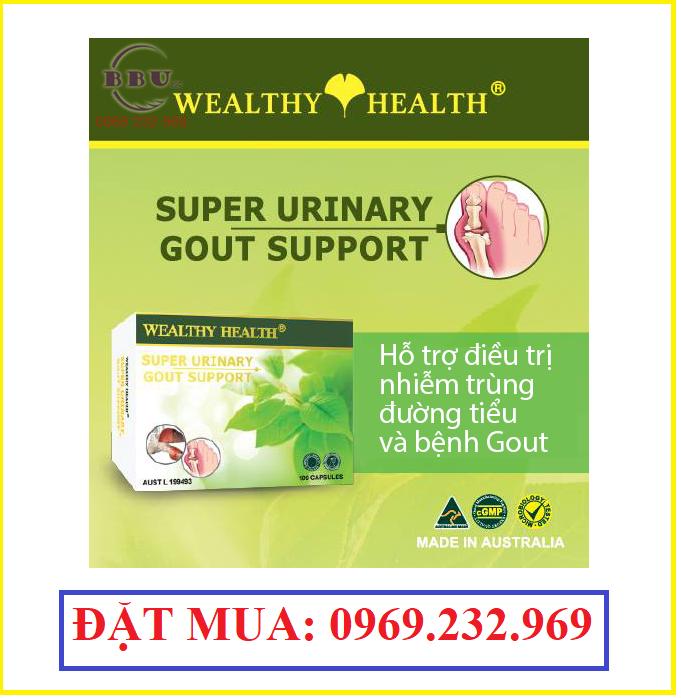 Thuốc hỗ trợ điều trị bệnh gút super urinary gout support