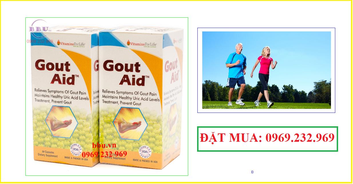 Thuốc hỗ trợ điều trị bệnh gút-gout aid