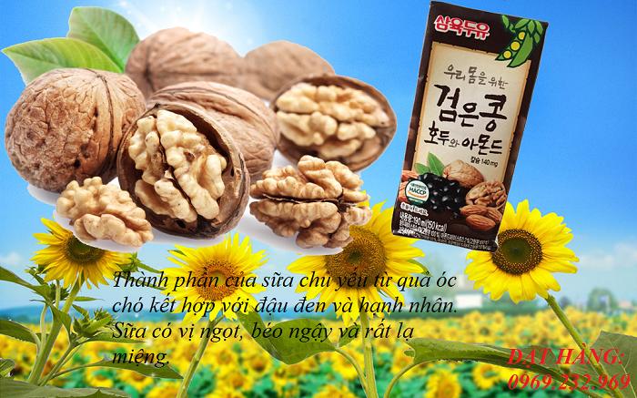 Chuyên cung cấp sữa hạt óc chó Hàn Quốc hàng đầu tại Việt Nam