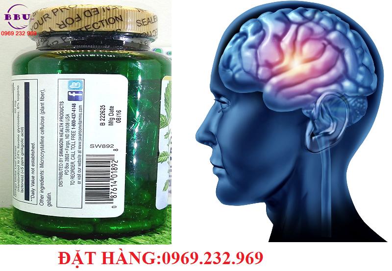 Công dụng của sản phẩm Thuốc hoạt huyết dưỡng não Ginkgo Biloba 120 mg 100 Capsules