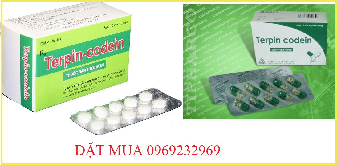 terpin-dextromethorphan-100mg6.png