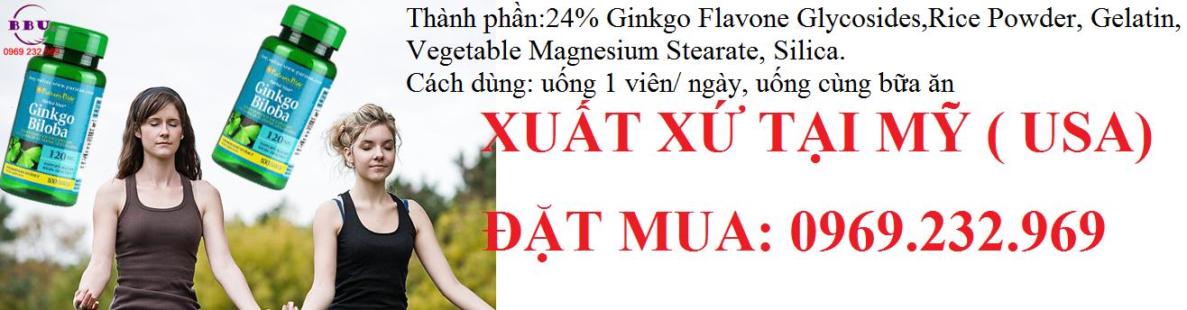Thành phần của sản phẩm Thuốc hoạt huyết dưỡng não Ginkgo Biloba 120 mg 100 Capsules