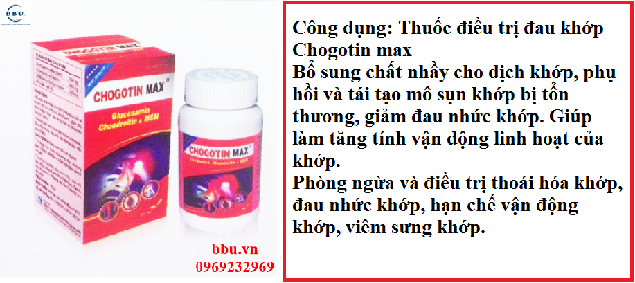 Thuốc điều trị đau khớp Chogotin max