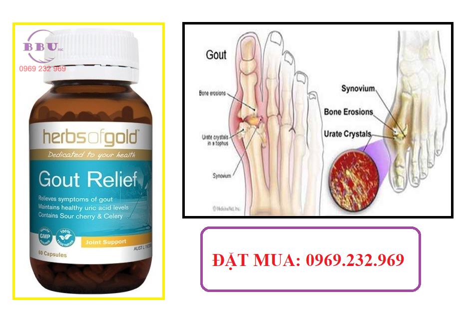 Thuốc điều trị gout-gout relief