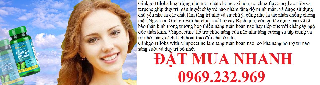 thuoc-hoat-huyet-duong-nao-ginkgo-biloba-120-mg-100-capsules-2(3)