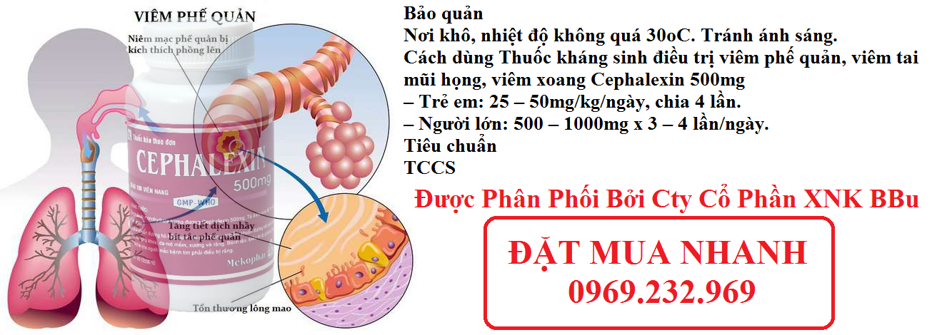 thuoc-khang-sinh-dieu-tri-viem-phe-quan-viem-tai-mui-hong-viem-xoang-cephalexin-500mg-11(1)