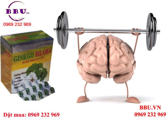 Tìm đại lý phân phối Ginkgobiloba 240mg tuần hoàn máu não