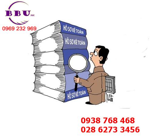 Hồ sơ kiểm toán nội bộ của công ty  XNK BBU