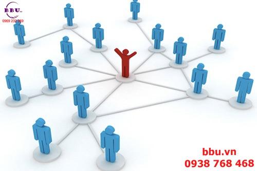 Vai trò chủ yếu trong một nhóm kinh doanh