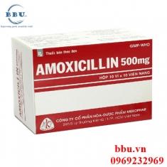 Thuốc kháng sinh điều trị viêm phế quản, viêm phổi, nhiểm khuẩn đường tiêu hóa Erybact 365
