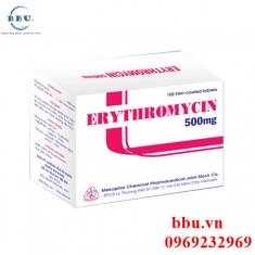 Thuốc kháng sinh điều trị nhiễm khuẩn đường hô hấp, sinh dục, đường tiêu hóa Erythromycin 500mg