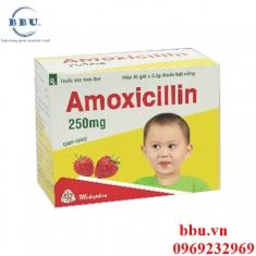 Thuốc kháng sinh điều trị nhiễm khuẩn dành cho trẻ em hương dâu Amoxicillin