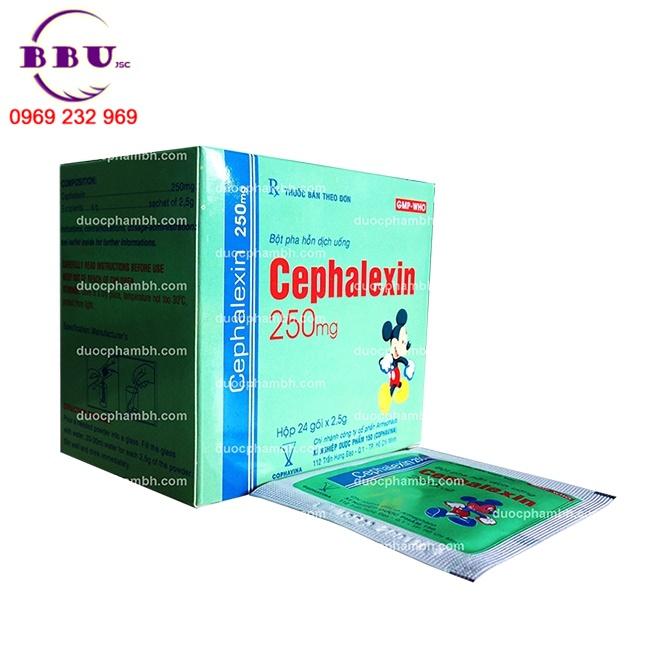 Thuốc kháng sinh CEPHALEXIN 250