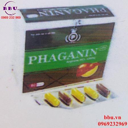 Viên uống bổ gan giải độc gan Phaganin
